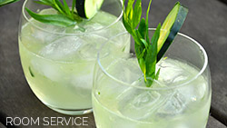 Mercure Southampton Centre Dolphin Hotel Privilege Bedrooms gin and tonic room service