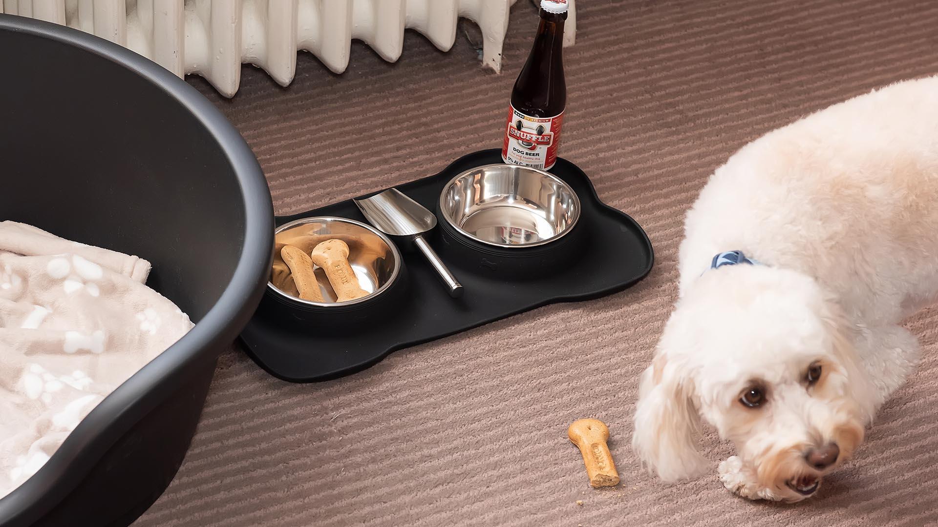 Dog friendly hotels in Southampton - MERCURE SOUTHAMPTON CENTRE DOLPHIN HOTEL 2